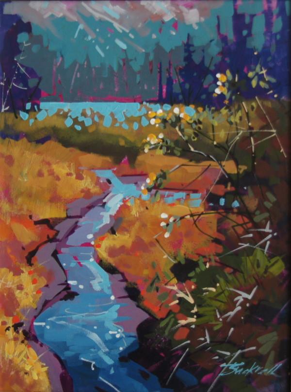 Island Stream by Brian Buckrell