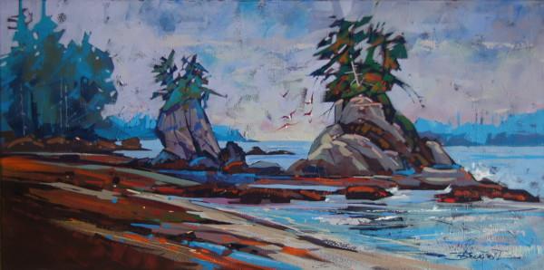 Spring Island Shoreline  by Brian Buckrell