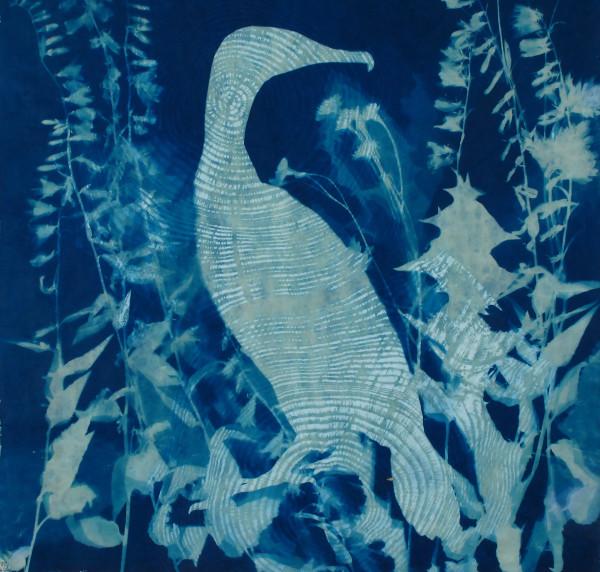 Cormorant by Bonnie Baker