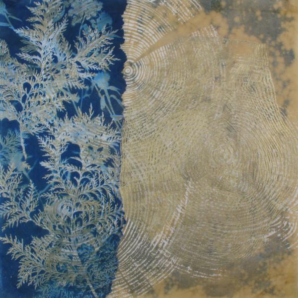 Golden Cedar by Bonnie Baker