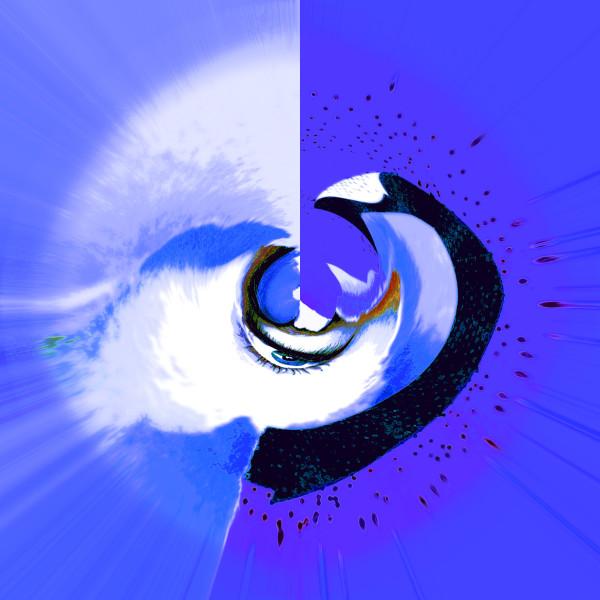Eye-Sore by Gina Godfrey