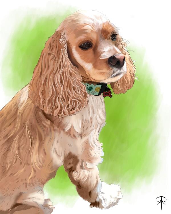 Addie Pet Portrait by Talisa Almonte