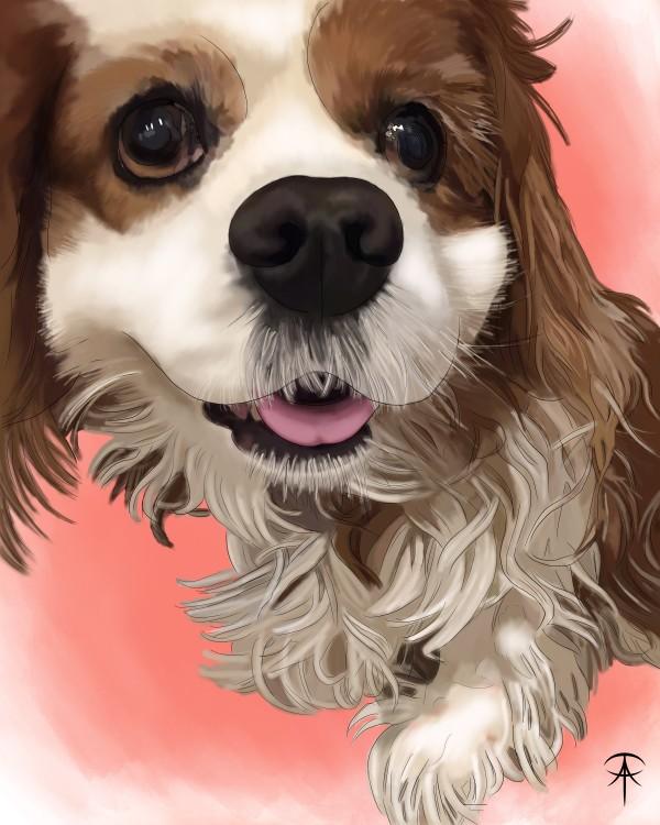 Gracie Pet Portrait by Talisa Almonte