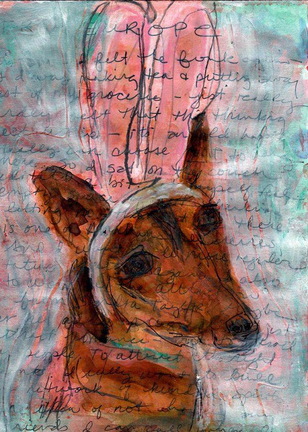 6.丽莎·索诺拉的《兔耳朵里的洛奇》