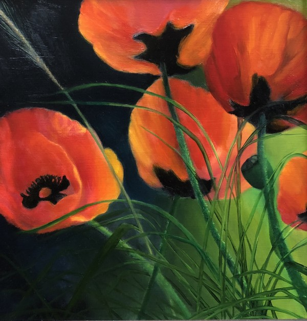 Poppies In The  Field by Carolyn Kleinberger