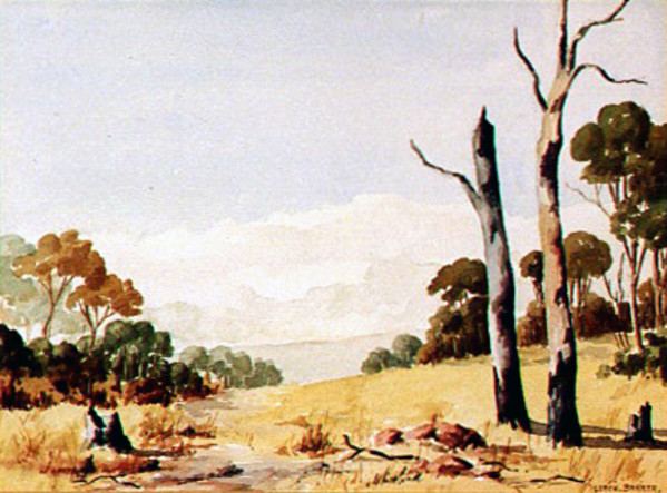 Outback by Leach BARKER