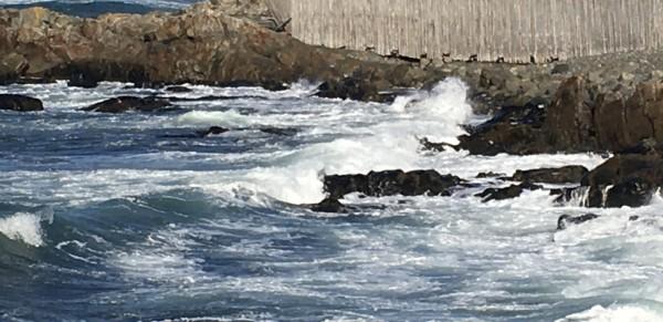 Water's Edge 3