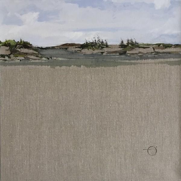 Inland Pond IP 43-41