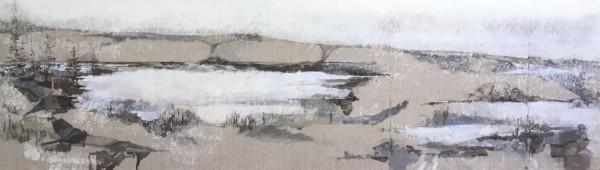 Inland Pond IP 43-21 'Winter'