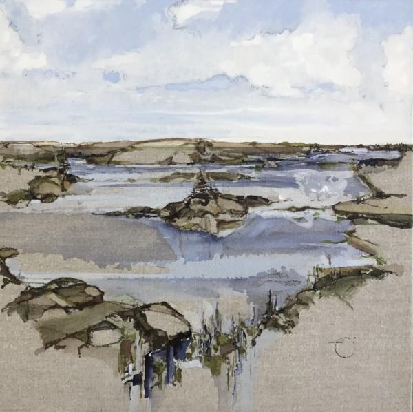 Inland Pond Series IP43-46 by Barbara Houston