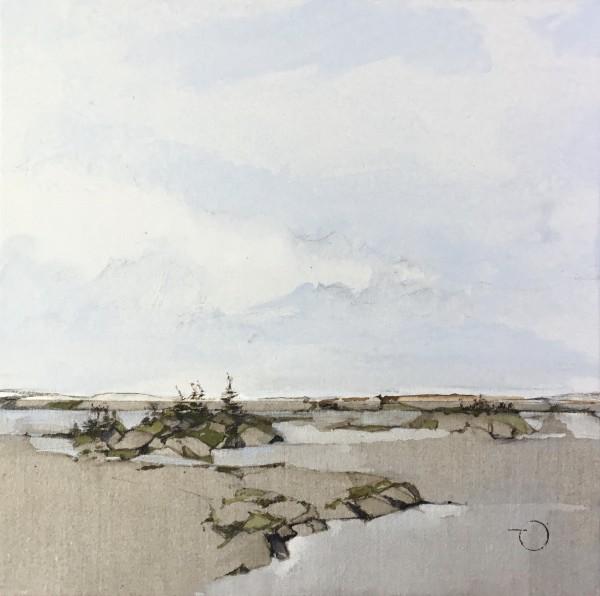 Inland Pond IP 43-31