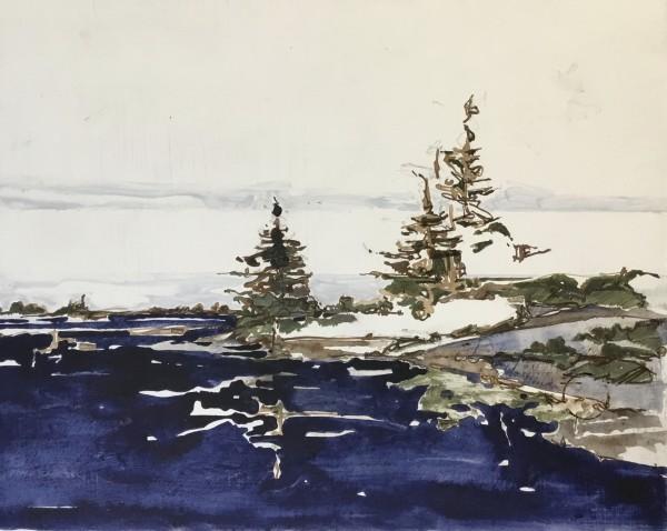 Inland Pond - IP43-64 by Barbara Houston