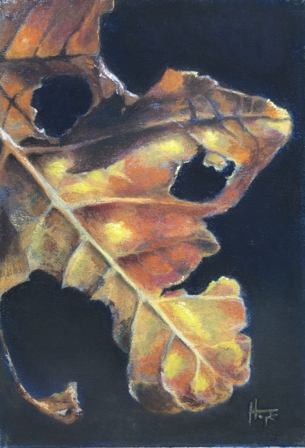 Leaf Face Study by Hope Martin