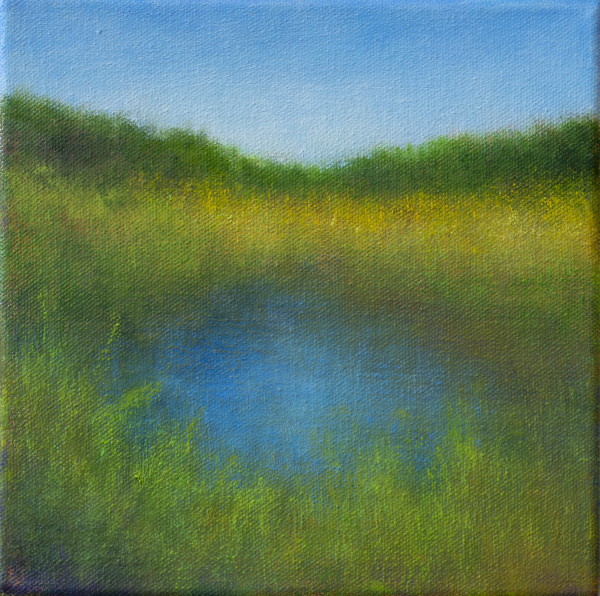Spring Marsh by Victoria Veedell