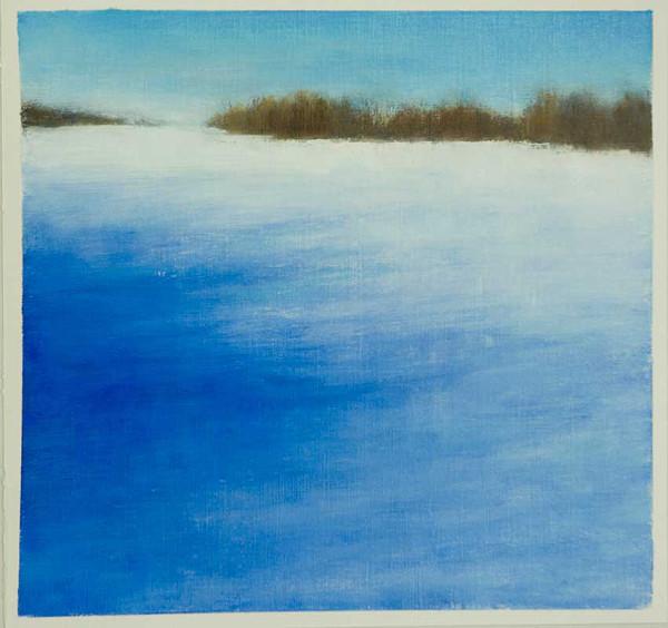 Winter Shadows by Victoria Veedell