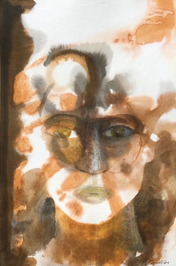 Amaadon by Michael Zieve