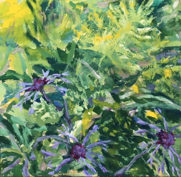 Summer Garden - study by Sarah Robinson