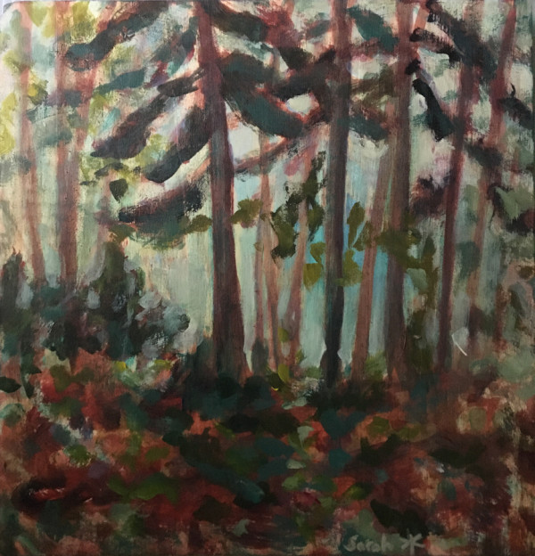 Laurentian Woods - study by Sarah Robinson