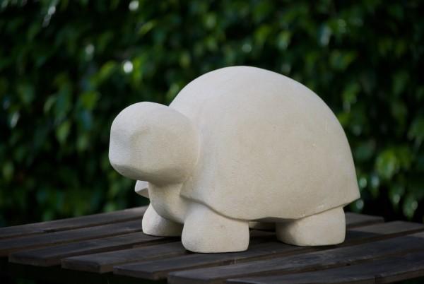 Angry Turtle by Capucine Safir