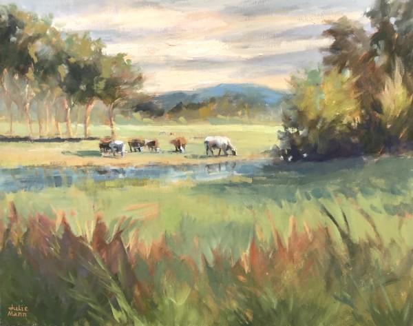 Pasture Glow by Julie Mann