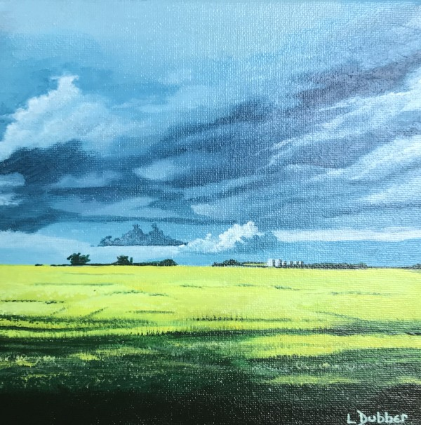 Yellow field by Lois Dubber