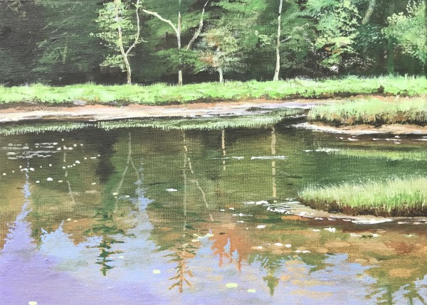 The Pond by Lois Dubber