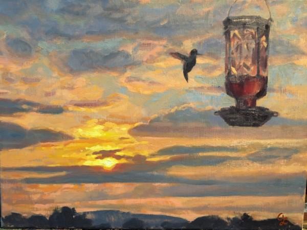 Hummingbird by Amy Lambrecht