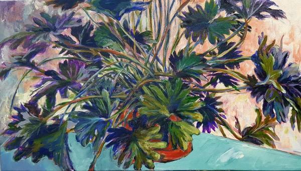 Violet Shadows by Heather Stivison