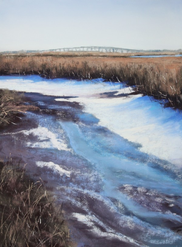 Snowy Marsh by Renee Leopardi