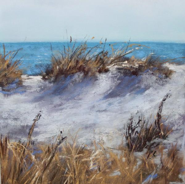 Winter Dunes by Renee Leopardi