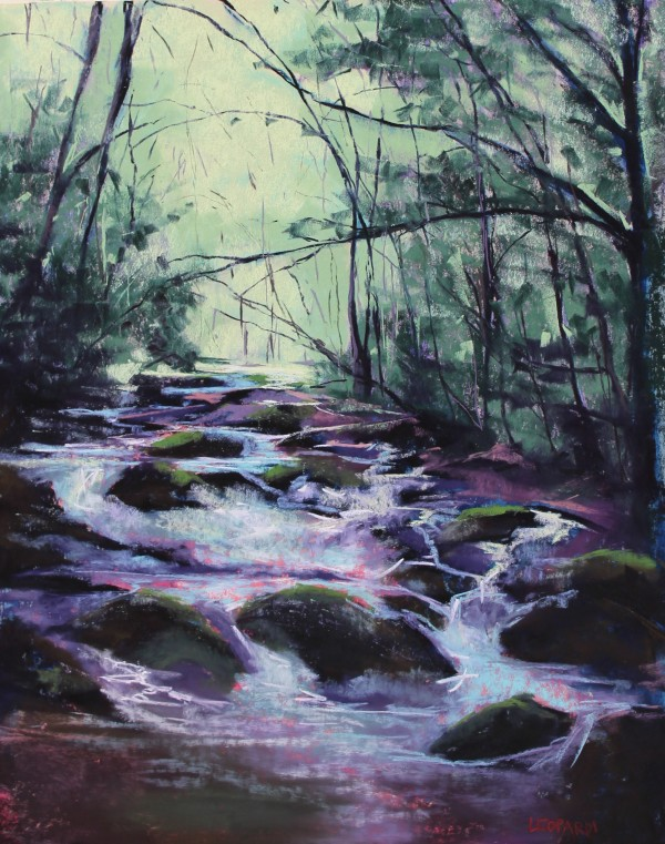 Rocky Creek by Renee Leopardi