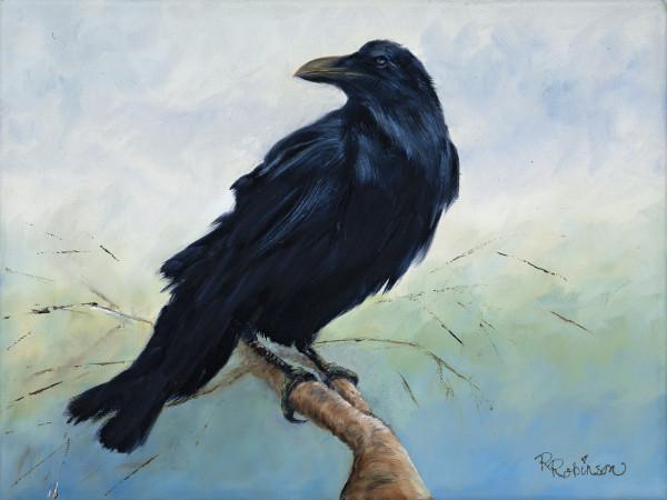 Raven on a Limb by Randy Robinson