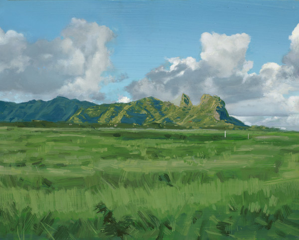 Kalelea Mountain Range, Anahola, Kauai by Kalani Largusa