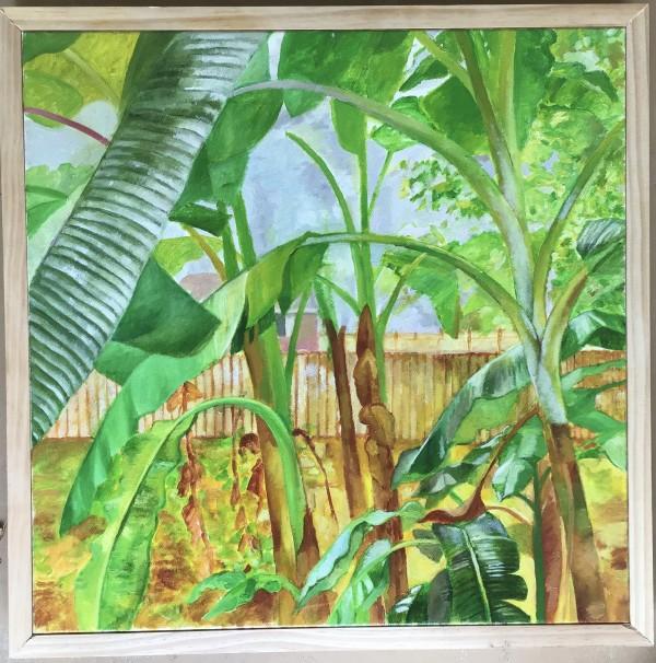 Backyard Banana Trees by Joe Roache
