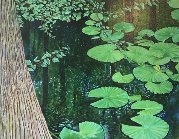 Swamp Water by Joe Roache