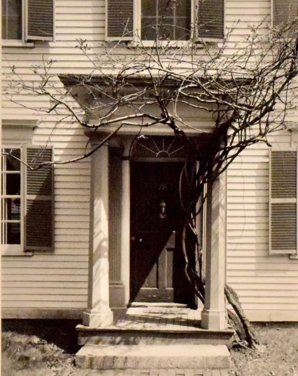 门与藤,纽贝布尔,康涅狄格州。由道格拉斯罗伯特