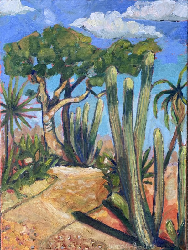 Cactus path by Wendy Bache