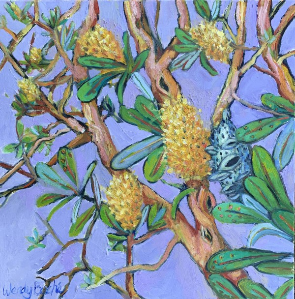 Banksia 2 by Wendy Bache
