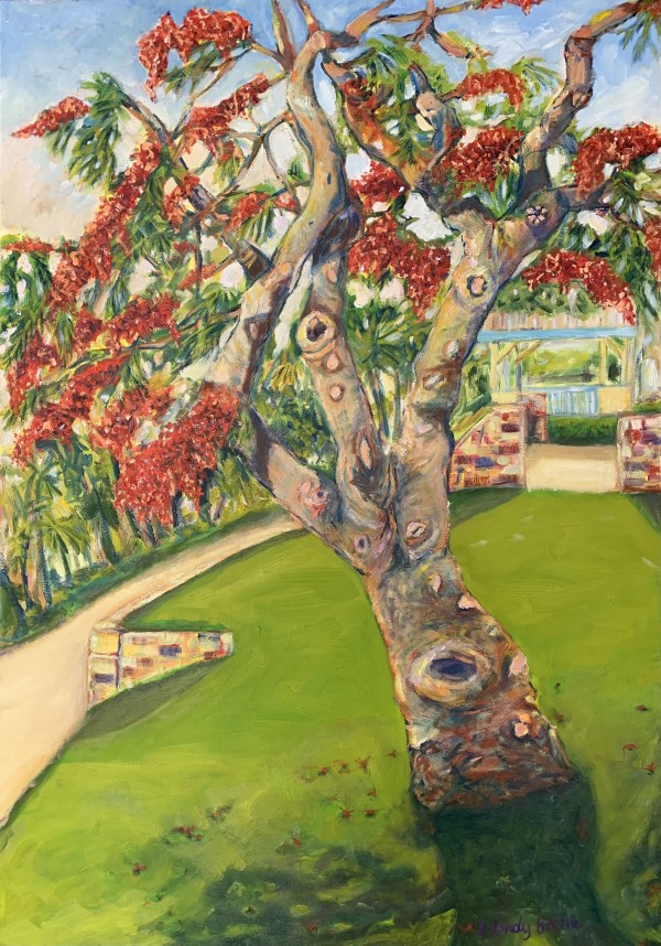 Tannum Poinciana by Wendy Bache