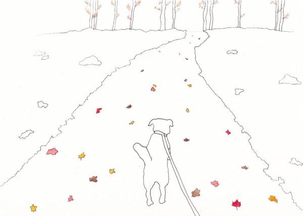 Joy Walk by Jennifer Crouch