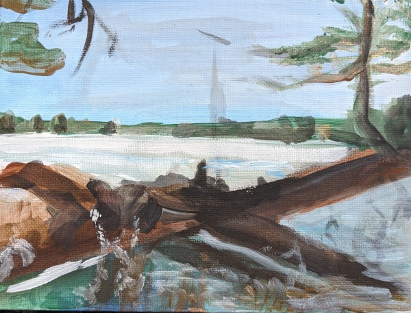 Lake Simcoe by Maria Kelebeev