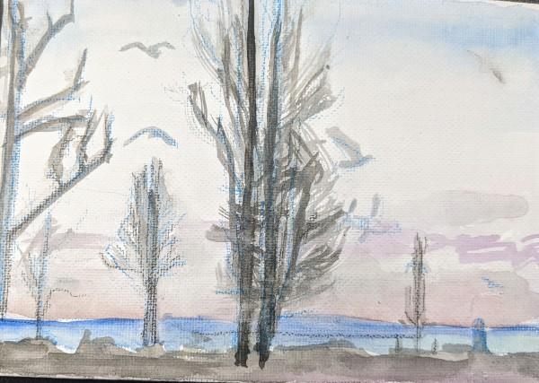Birds at the Park by Maria Kelebeev