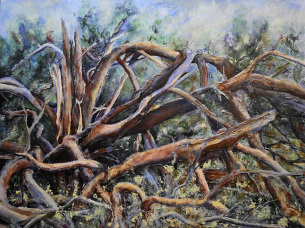 Struck by Lightening by Lisa Wallace Deen