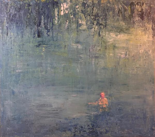 Wild Swimming by John Ferry