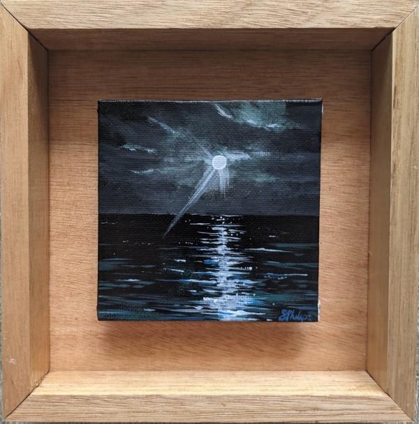 Miniature Ocean Study #17 by Studio Philips