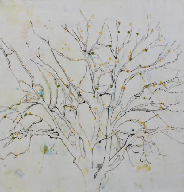 In the Sugar Plum Forest by Helen DeRamus