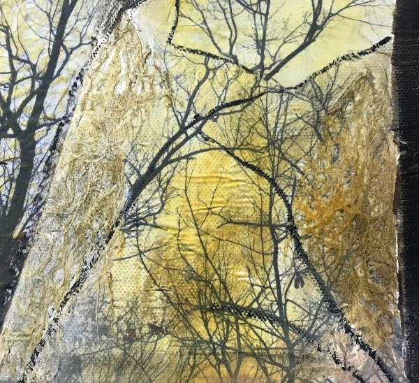 TreeVII by Helen DeRamus