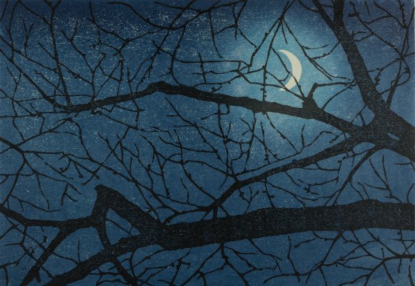 HImeji moon by Mara Cozzolino