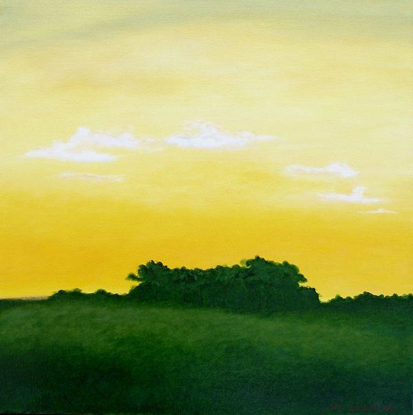 Sunset in Texas by Alex Wilhite