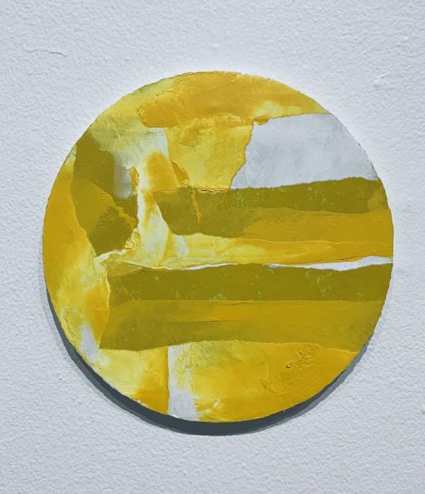 Sun by Alex Wilhite